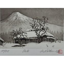 Hiroto Norikane - Mon Fuji...