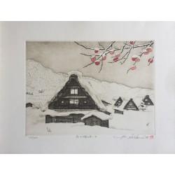 Norikane Hiroto - Shirakawa...