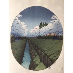 Hasui Kawase - Cerisiers en...