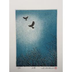 Hiroto Norikane - L'envol