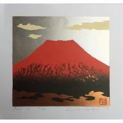 Kunio Kaneko - Fuji 101