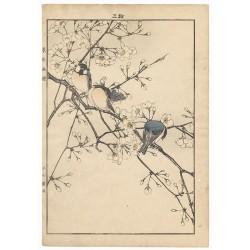 Imao Keinen estampe japonaise authentique moineaux et fleurs de pruniers