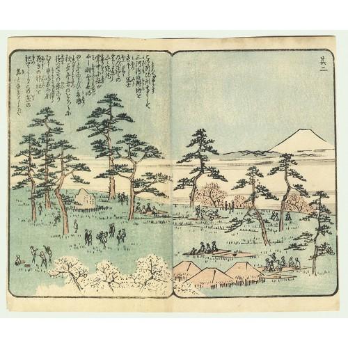 Les collines d'Asakusa